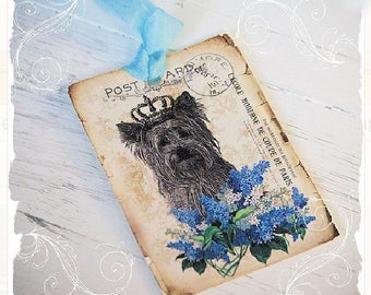 Yorkshire Terrier, Yorkie Wearing A Crown, Gift Tags, French Postcard Tags