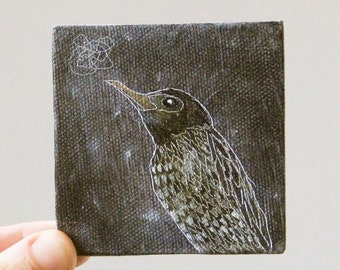 starling / original small painting