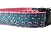 Dog Collar, Carolina Blue, 1 inch wide, adjustable, quick release, metal buckle, chain, martingale, hybrid, nylon