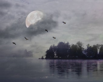 "Surreal landscape photography dark grey blue full moon lake trees nature dreamy - ""Island moonlight"" 8 x 10"