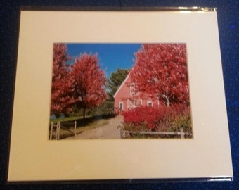 "Fall Scene in Pretty Marsh, Maine  on   MT. Desert Island     8"" x 10"" matted print"