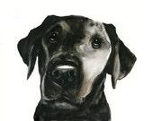 CUSTOM PET PORTRAIT  Original watercolor painting 8X10inch-Christmas gift