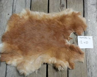 One Rabbit Hide as Shown. Lot No. 170425-L