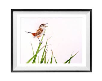 Nature Animal Wall Art Decor Wren Marsh Wren bird art prints song bird Small bird Watercolor painting Nature wildlife art print