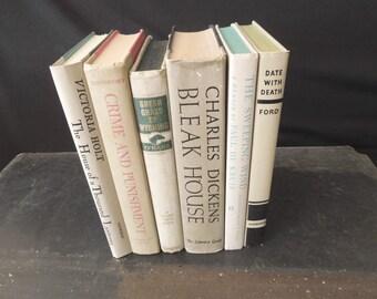 Beige Bone Sand Neutral Book Stack - Vintage Books for Decor - Interior Design HGTV - Decorative Books