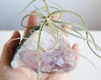 Crystal Air Planter, Amethyst Geode Airplant Indoor Garden, Large Size, Substantial Piece, Boho Gift For Mom, Mothers Day Under 50