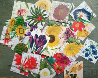 """Vintage Botanical Stickers, 1.5"""" or 2"""" squares, Flower stickers, Vintage Inspired, Floral Stickers, journal planner stickers, 100% recycled"""