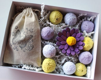 Plantables and Paper Sampler Box - Purple Hues - READY TO SHIP