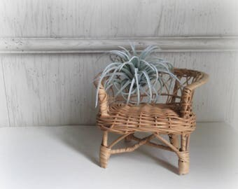 Vintage Wicker Armchair Planter Boho Planter Air Plant Holder Jungalow Rattan Doll House Furniture