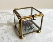 Vintage Brass Glass Box Small Footed Square By Hecho En Mexico, Mexican Jewelry Display Case, Bohemian Anthropologie Style