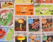 Mushroom Mania 50 Premium Vintage Mycology Postage Stamps Toadstool Fungus Horticulture Shitake Fungi Spore Morel Shroom Topical Philately 2