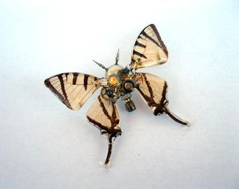 OOAK STEAMPUNK real butterfly wings sculptural brooch
