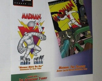 Rare vintage original 2-sided 1995 Catwoman, Madman, Big Guy 17 by 11 inch comic book promo poster 1: Never for sale 1990's comics pin-up