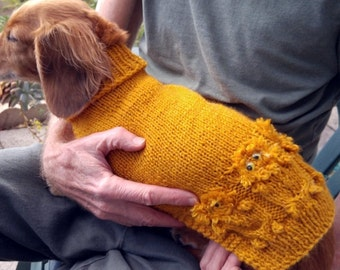 PDF Download Knitting Pattern for Lena's Looney Lions Miniature Dachshund Sweater