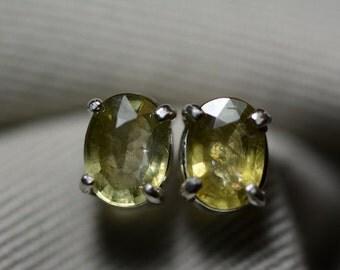 Sapphire Earrings, Green Sapphire Stud Earrings 2.40 Carat Appraised at 750.00, September Birthstone, Certified Sapphire Jewelry