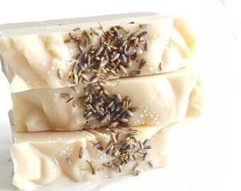 Cocoa Butter soap Lavender amber vanilla  artisan soap cold process grapeseed oil coconut oil