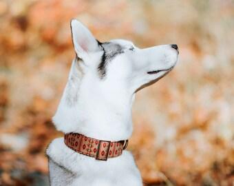 Khaki Brown Southwest Dog Collar