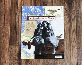 Collage Art, Collage, Nature, Girls, Birds and Bees, Original Art