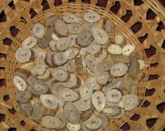 Decorative Antler Button