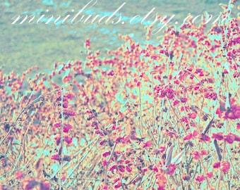 Wetlands 'Raspberry Meadows' digital download. Nature photography, botanical wall art. Atmospheric aqua blue dark pink. NOT A PHYSICAL ITEM.