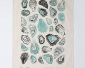 Oyster Tea Towel - Aloe