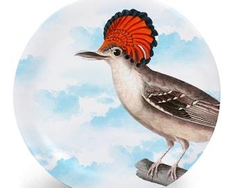 "Atlantic Royal Flycatcher Bird Plate, Melamine Plate, Vintage Bird Illustration, Kitchen, decorative plate, gift, Dinner Plate, 10"" plate,"