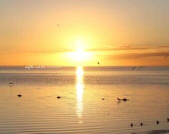 Soft Yellow Sunset Beach Photo, Ocean Seagull Photography, Ocean Sea Travel Art, Tropical Coastal House Decor, Nautical Home Decor Wall Art