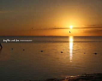 Dark Yellow Sunset Beach Photo, Ocean Seagull Photography, Sunset Sea Picture, Tropical Coastal House Decor, Nautical Home Decor Wall Art