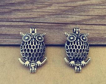 4pcs Antique silver owl hollow out  (copper) box charm pendant  17mmx28mm