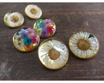 Preserved English Daisy - Gold Tie Tack Clutch Lapel Pin Brooch