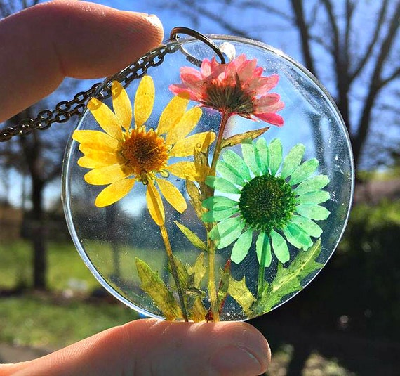 Genuine Chrysanthemum, assorted, preserved in clear casting resin enclosed within a large, round pendant. Antique Bronze Necklace Chain.