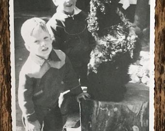 Original Vintage Photograph Toby Does Tricks