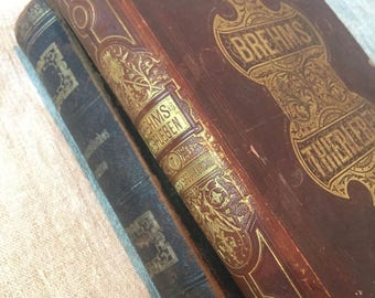 Old French Science and Pharmaceutical Books