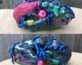 Real Raccoon Skull Taxidermy Sculpture Zombie Robot Weird Strange Gothic Art Unique Handmade