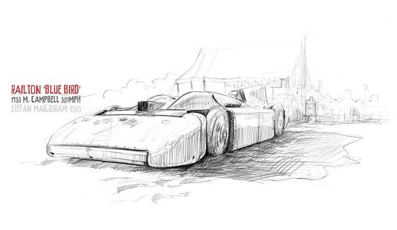 Campbell's Bluebird - Original A3 Pencil Sketch