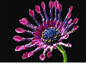 Needlepoint Kit or Canvas: African Daisy Bright