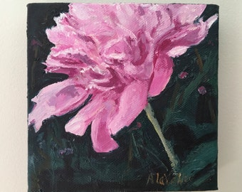 "Pink Peony , 6""x6"" Small, ORIGINAL, Contemporary and expressive oil painting by Maine artist Adrienne Kernan LaVallee MyMainePaintings"