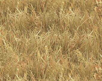 Landscape Medley Wheat Grass by Elizabeth's Studio 250-Wheat