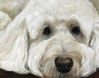 CANVAS or Paper PRINT of original oil painting of Labradoodle Goldendoodle/ Mary Sparrow of Hanging the Moon Studio