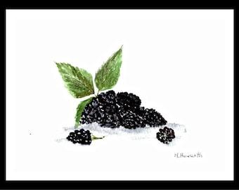 Blackberries watercolor Blackberry art Blackberry illustration Food art Original painting Fruit watercolor Food illustration 7 x 5 inch