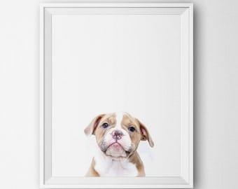 Puppy Digital Art Print, Minimalist Soft Colors Wall Decor, Modern Home, Dog Art, Printable, Nursery Baby Animal Dog Photography Minimalist
