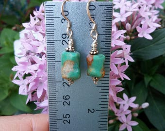 Cute Sterling Silver Dangle Earrings With Green and Brown Stone