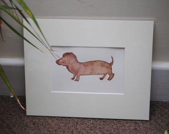 Sausage dog, Daschund watercolour