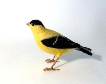 American Goldfinch Needle lefted bird