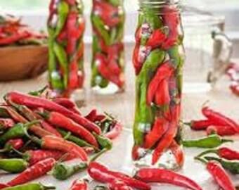 VPPHC) LITTLE DRAGON Cayenne Hot Pepper~Seeds!!!!~~~~Smaller Fruits ~ Big Flavor!!!