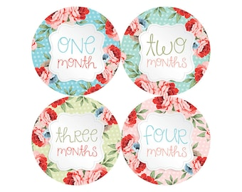 Baby Girl Month Stickers Monthly Baby Stickers Milestone Baby Month Stickers Baby Girl Vintage Floral Baby Shower Gift