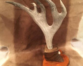 Unique Dall Sheep Horn and Caribou Antler Display Stand