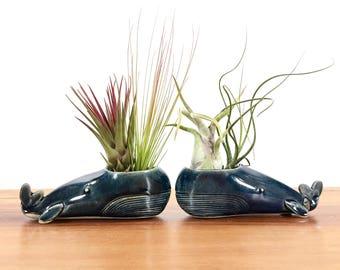 whale vase / whale air plant holder / whale bud vase / satin blue whale / one whale