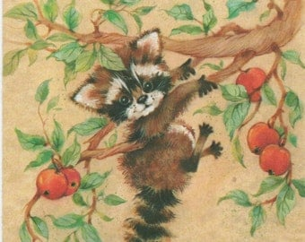 Sunshine Sampler Get Well Card, cute raccoon, Hang In There. . . , c1980s, Used, good shape