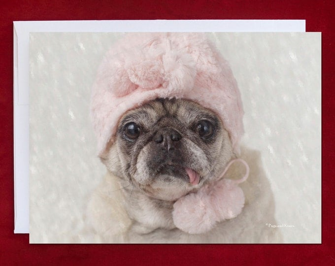 Funny Holiday Card - Pug Holiday Card - 5x7 - Let It Snow